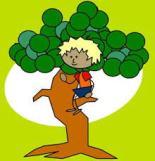 bomen klimmen1