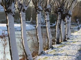 Sneeuw winter 2014 december 8