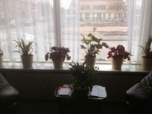 Mama planten 1