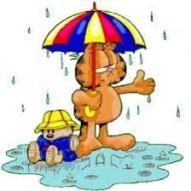 regen (3)