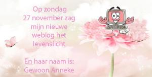 weblog2