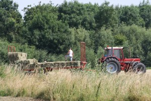Hooibouwen1