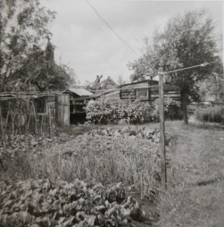Tuin vroeger