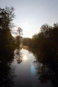 Herfst Loetbos 36