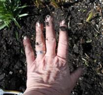 Hand (Small)