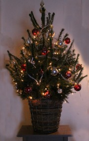 kerstboom-small