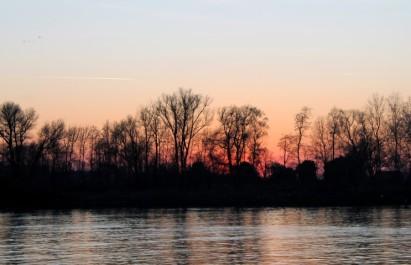 rotterdam-avond-4-small