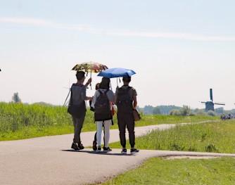 Kinderdijk 5 (Medium)