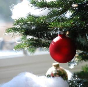 kerstboom_flash_360