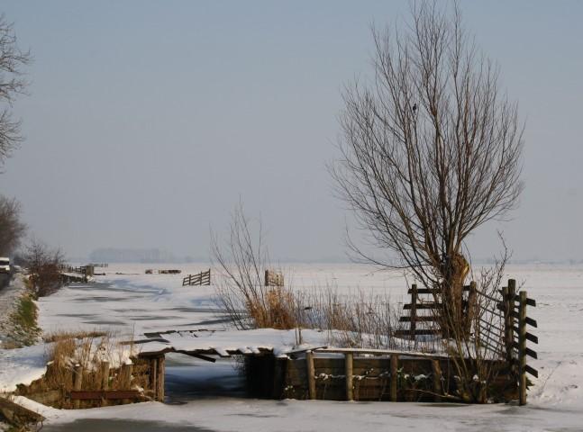 winter (Small)