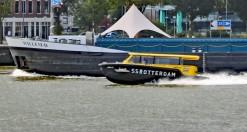 Rotterdam 3 (Klein)