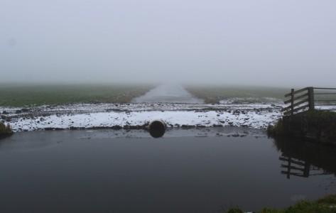 Hek in sneeuw (Middel)