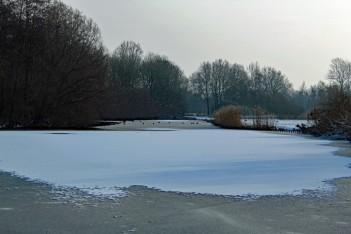 sneeuw 4 (middel)