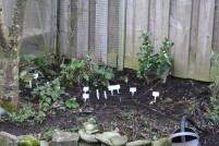 Tuin 7 maart (Middel)