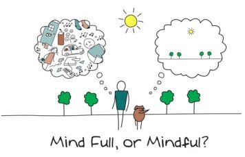 mindfulness-cursus-amsterdam
