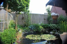 Tuin 3 (Middel)