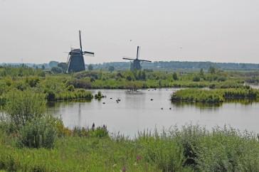 Kinderdijk molen (Middel)