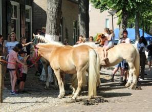 Paardemarkt (Middel)