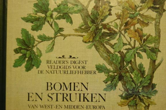 bomen-en-struiken-van-west-en-midden-europa-79362705