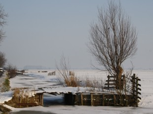 winter (Middel)