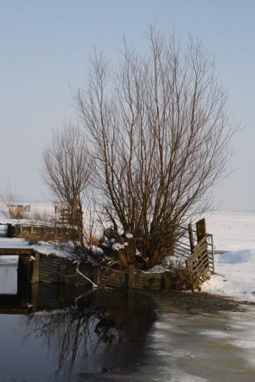 winter1 (Middel)