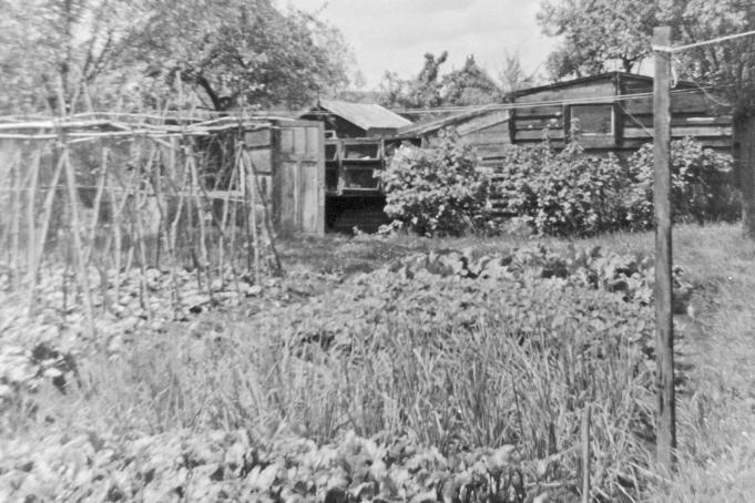 Tuin 70 er jaren
