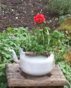 Tuin 4 (Middel)