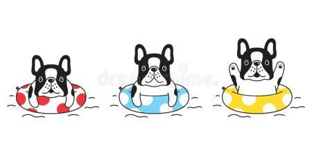 het-pictogram-van-de-hond-vector-frans-buldog-zwemmen-beeldverhaalkarakter-ringspool-symboolillustratie-krabbelontwerp-leuk-154419760