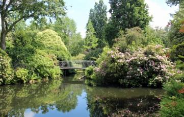 Arboretum.jpg 1 (Middel)