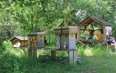 Bijenkasten (Middel)