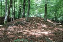 Grafheuvel 4 (Middel)